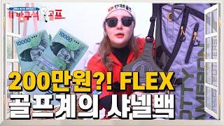 [쇼핑하울]미쳤..ㄷ..200만원?!스카티카메론백 단점…