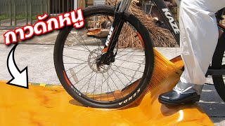 คุณจะปั่นจักรยานผ่านกาวดักหนูโดยไม่ติด...ได้หรือไม่?!!
