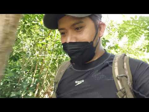 Funny Hunting… 6 hunters vs 1 airgun