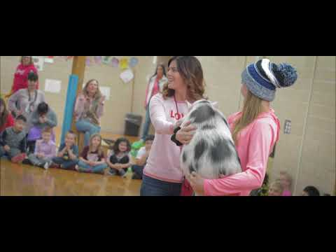 Classroom Focus: Pennies For Pink at Woodson Kindergarten Center