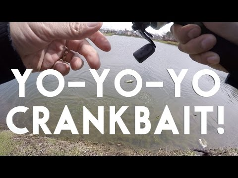 YO-YO CRANKBAIT TECHNIQUE ACTION FOR CATCHING SPRING BASS VLOG #6 RAYQ