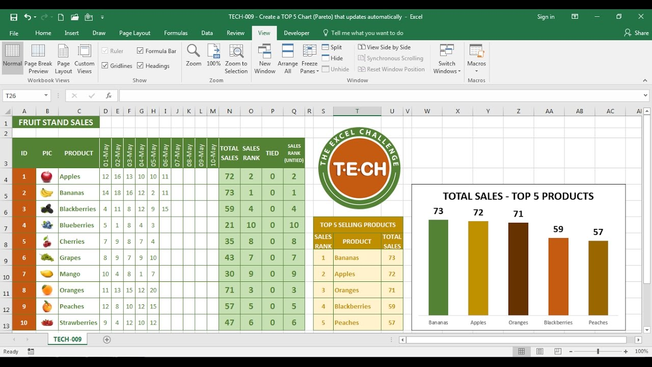 Tech 009 create a top 5 chart pareto in excel that updates and tech 009 create a top 5 chart pareto in excel that updates and sorts automatically nvjuhfo Gallery