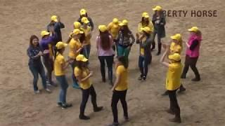 Всеукраинская ассоциация Liberty Horse