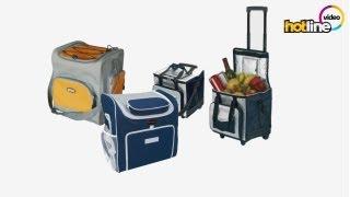 Обзор термоэлектрических сумок Supra и Mystery