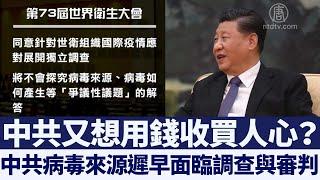 世衛成員國一致同意 調查中共病毒起源|新唐人亞太電視|20200520