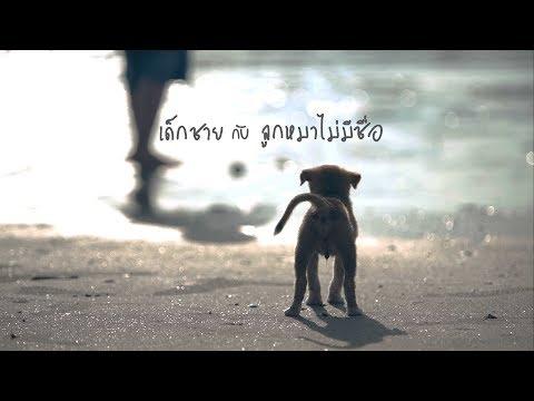 หนังสั้น ถอดรหัสคำพ่อสอน เด็กชายกับลูกหมาไม่มีชื่อ ฉบับเต็ม by KidsOnCloud