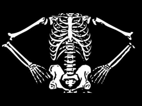 Anatomy Bone Song