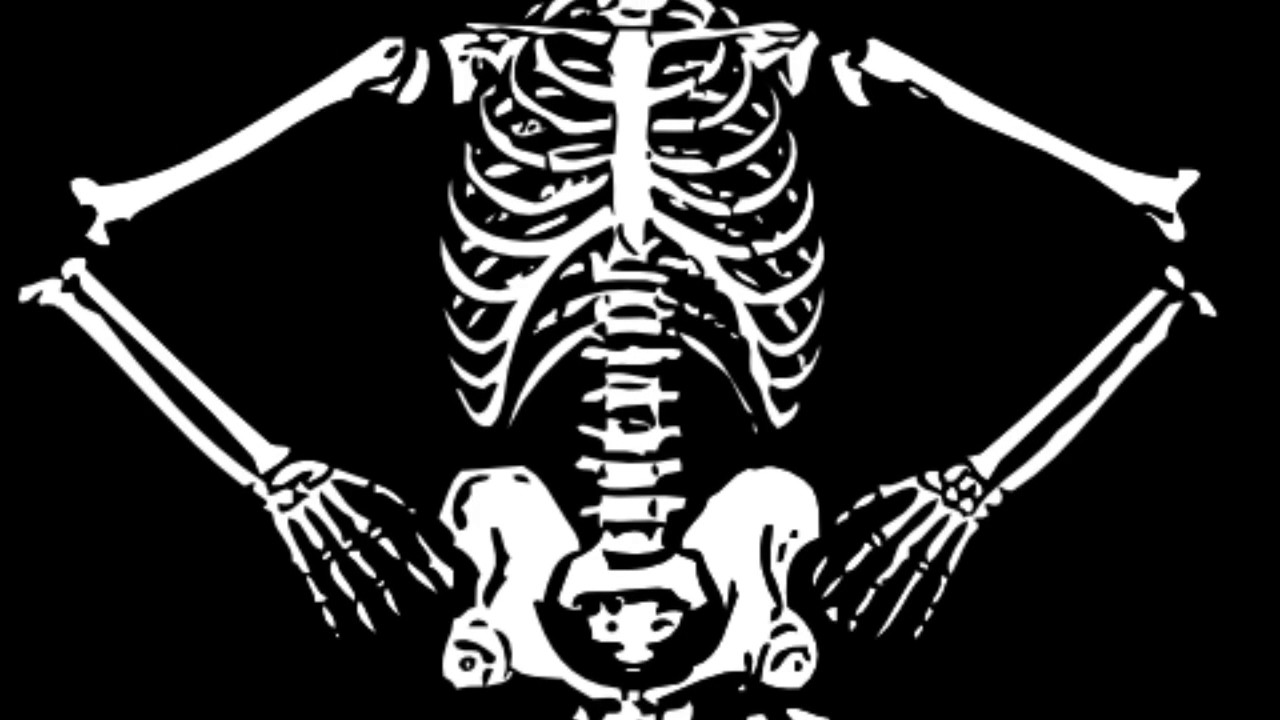 Anatomy Bone Song - YouTube
