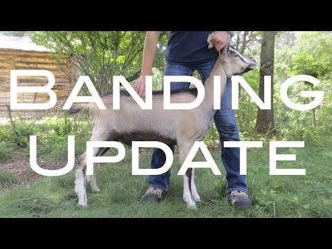 How To Band Video Update 2