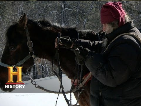Mountain Men: Eustace and Preston Retrieve Their Horses  (S3, E10)