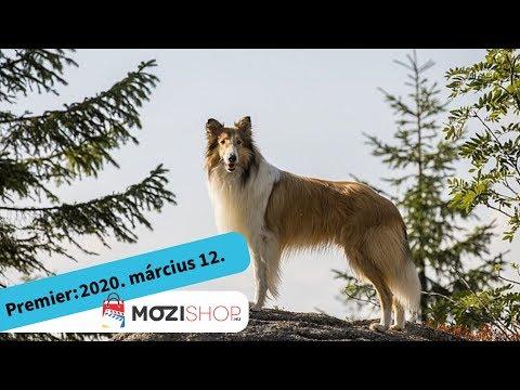 youtube filmek - Lassie hazatér - magyar szinkronos előzetes #1 / Családi kaland