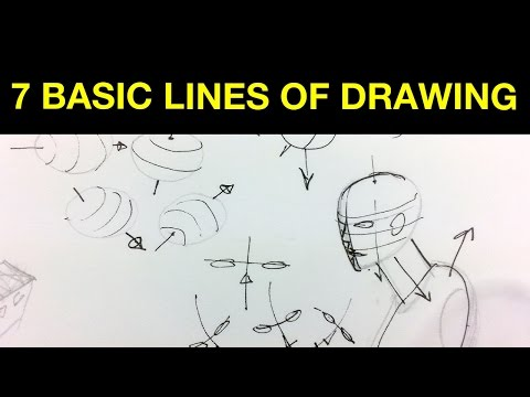 7 Basic Lines of Drawing