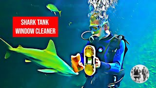 Window Cleaner to the Sharks!