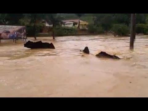 Água das chuvas arranca asfalto e arrasta casa em Rio Bananal
