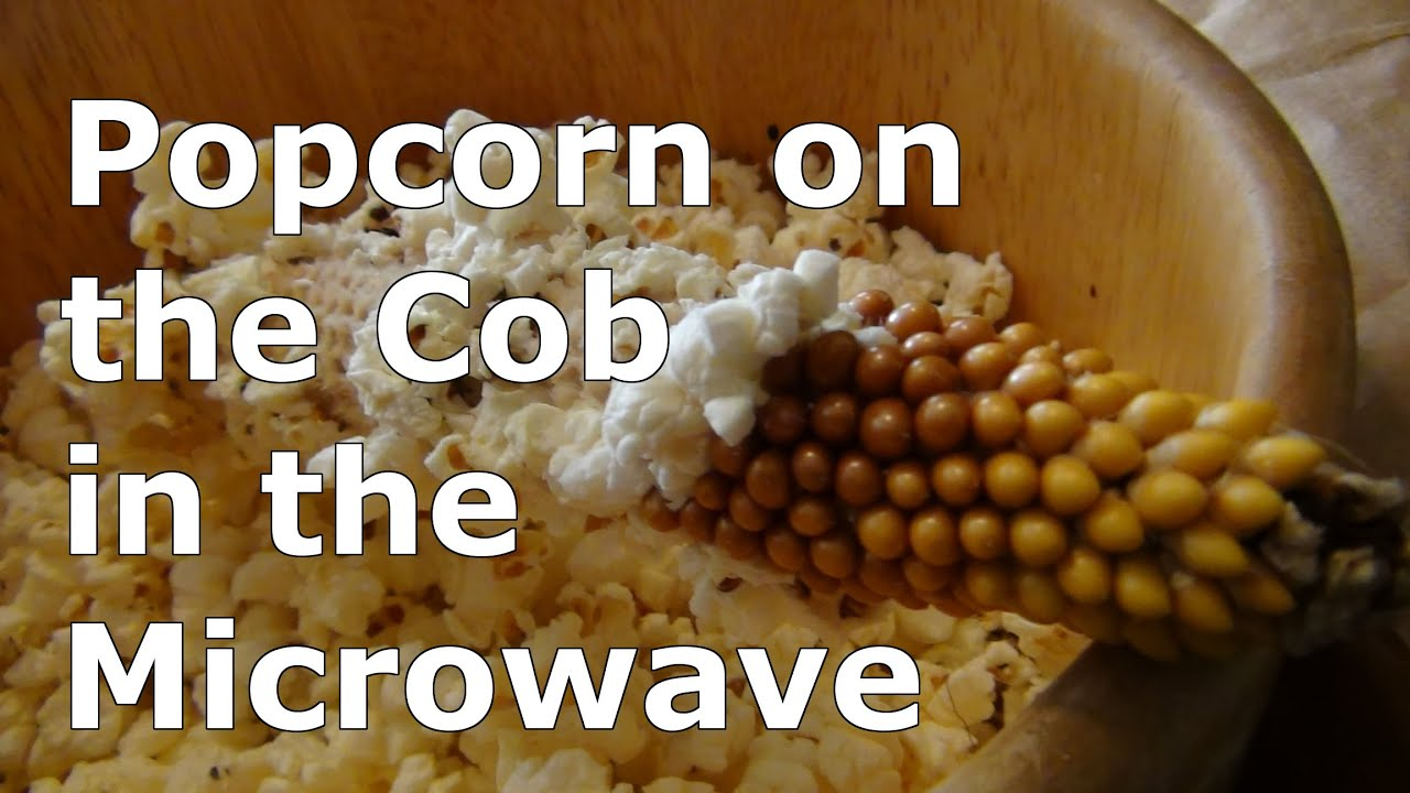 how to pop homegrown popcorn on the cob in the microwave