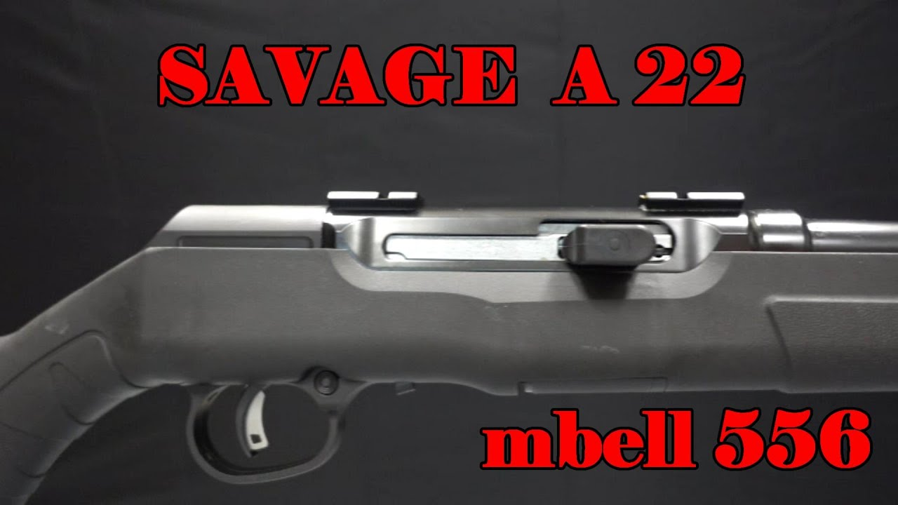 Savage Arms A22 22 WMR Magnum Semi Auto Rifle: Shop Review (field test to  follow)