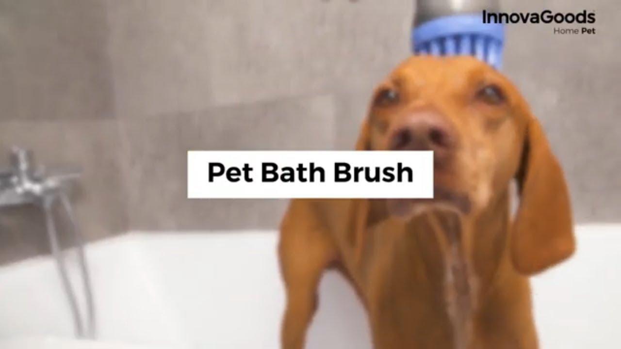 Pet Grooming Bathing Brush Clean Soap Shampoo Dispenser Hair Skin Massager Dog