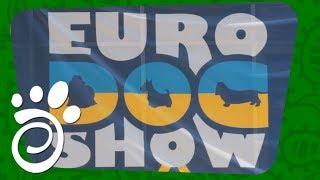 Euro Dog Show In Ukraine 2017 Review. Все О Домашних Животных