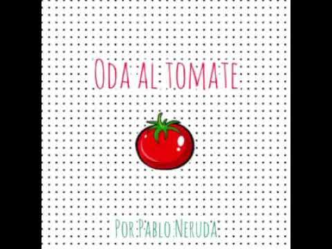 Oda al tomate