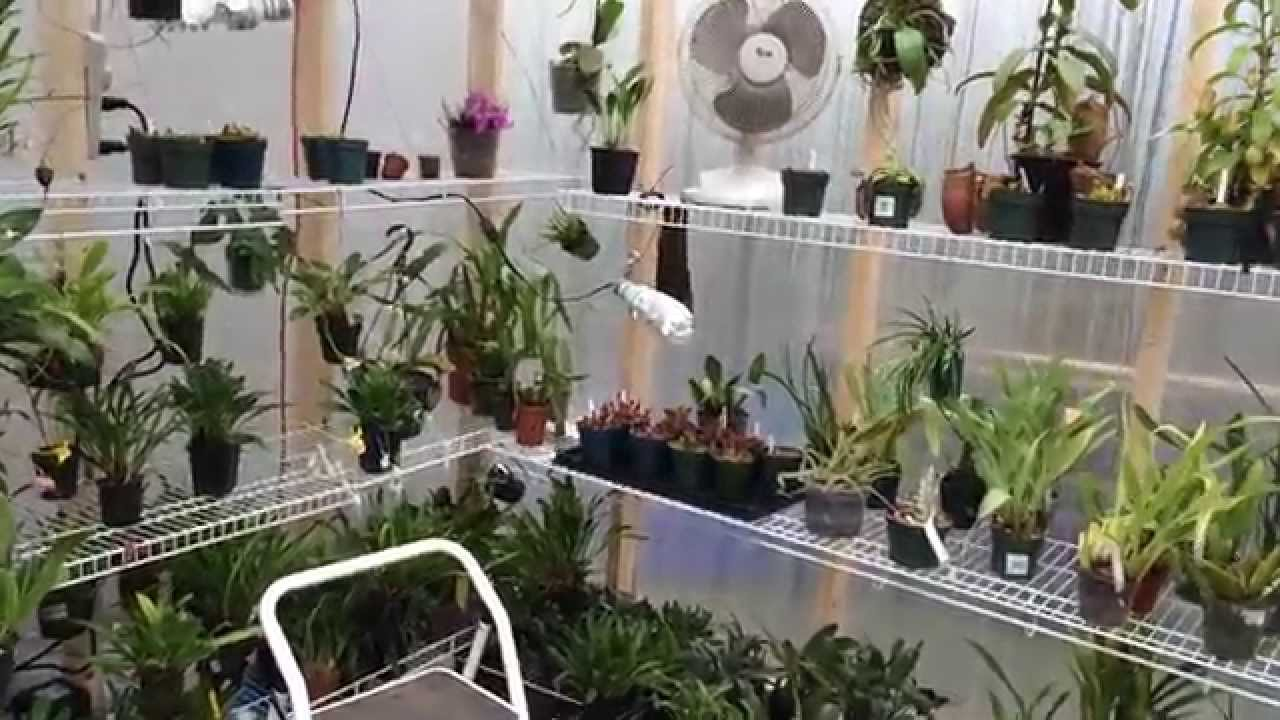 Greenhouse Build: My New DIY 10 X 16 Greenhouse Tour   YouTube