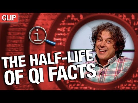qi-|-the-half-life-of-qi-facts