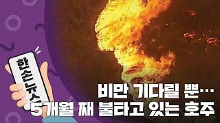 [15초뉴스] 비만 기다릴 뿐...5개월 째 불타고 있는 호주 / YTN