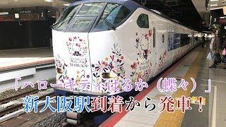 ハローキティはるか(蝶々) 新大阪駅到着から発車!