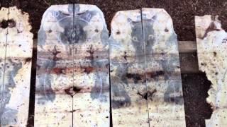 Buckeye Burl Veneers For Fine Woodworking | Californiawoods