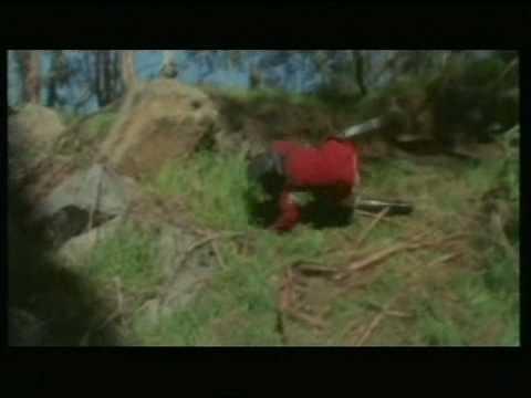 GRAND GALOP - Hello World (clip officiel)