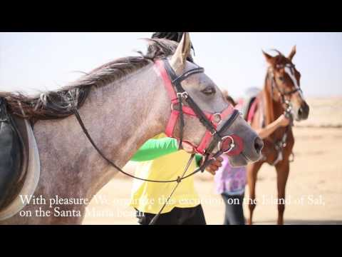 Horse Riding  - CAPE VERDE HOLIDAY -
