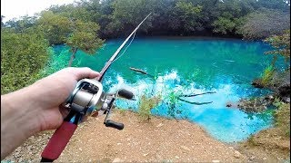 RARE Bass Caught In Urban Swimming Area -- (Austin Texas Fishing)