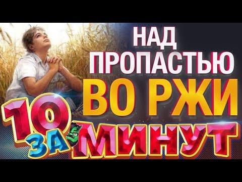 Над пропастью во ржи за 10 минут от Евгения Вольнова