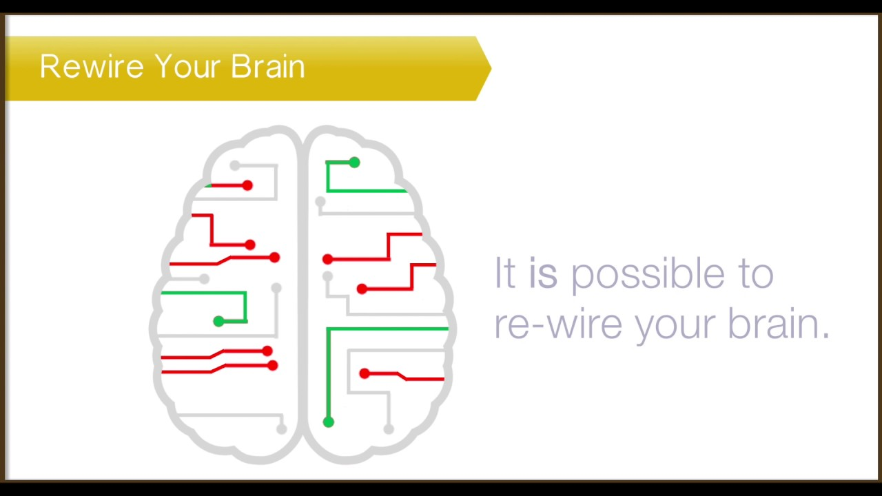How to rewire your brain to change your habits   Am I Hungry? Mindful Eating Programs and Training