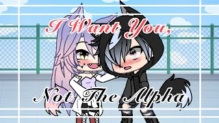 I Want You, Not The Alpha || GLMM || Gacha Life