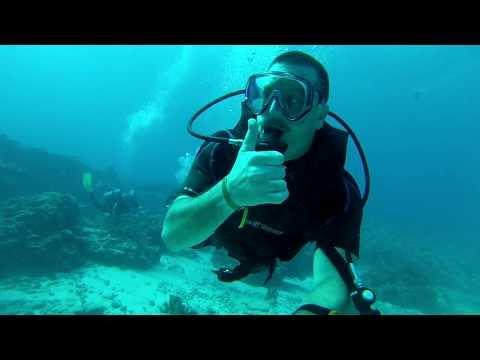 Sea Turtle Punta Negra Cancun Mexico SCUBA Dive
