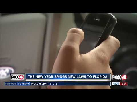 New Florida laws that go into effect July 1, 2018 from YouTube · Duration:  45 seconds