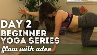 DAY 2/30 Beginner Yoga Series | Spinal Movement & Body Awareness