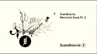 Scandinavia - Electronic Souls Pt.2 Teaser (Franco Bolli)