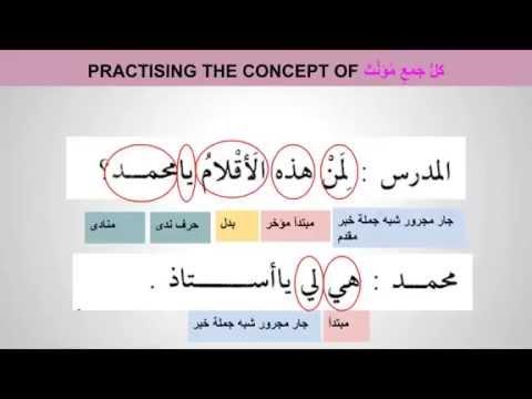 Madina 1   Lesson 40 Understanding Non Human Broken Plurals of كل جمع مؤنث