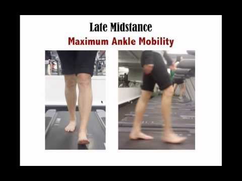 Walking Gait Assessment   The most functional movement assessment?  with Dr Emily Splichal