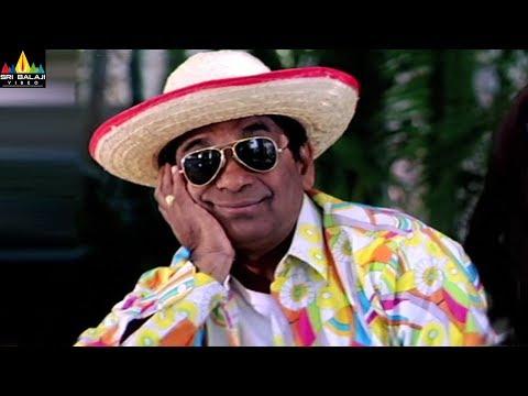 Brahmanandam Comedy Scenes Back to Back | Party Telugu Movie Scenes | Sri Balaji Video