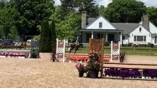 True North- Fairfield County Hunt Club Horse Show 5.30.15
