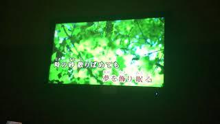 月光花/津田美波 (スマホ撮り) 津田美波 検索動画 20