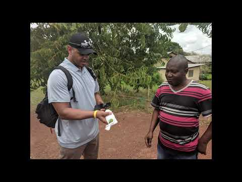 Georgetown EMBA 23 - Liberia Captsone Research Travel (Mangos2)