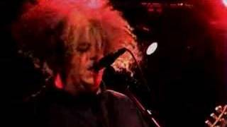"The Melvins - ""Civilized Worm"""