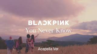 Clean Acapella Blackpink You Never Know