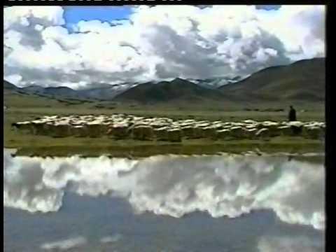 Sustained Development: China's Design for Tibet. Documentary Film 2002.