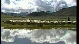 Sustained Development: China's Design for Tibet. Documentary Film 2002.