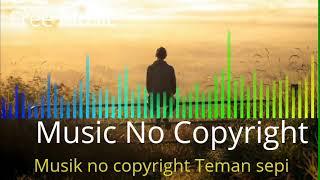 Music no copyright teman sepi
