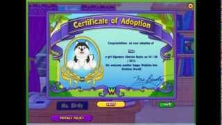 Adopting Nala (signature Siberian Husky)